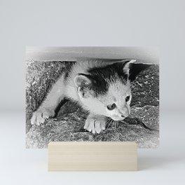 Is it safe? Mini Art Print