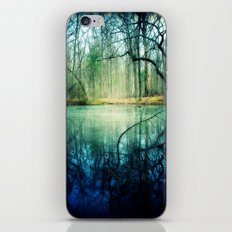 Enchantment of Everaft iPhone & iPod Skin
