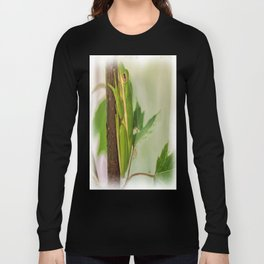 Painted Green Tree Frog Long Sleeve T-shirt