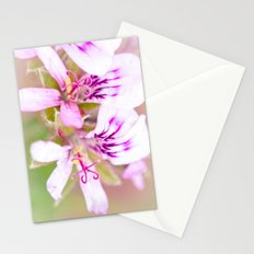 P. Stationery Cards