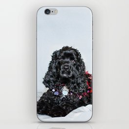 Valentine Puppy Photography Print iPhone Skin