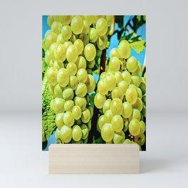 Vineyard Mini Art Print