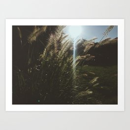 A Breeze Art Print