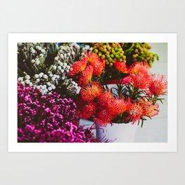Pincushion Protea at Mong Kok Flower Market Art Print