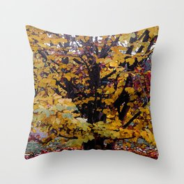 Paintography Of Autumn Throw Pillow