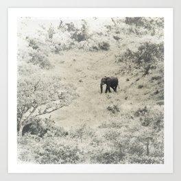 africa is a feeling - elephant Art Print