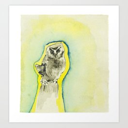 Fist Sized Feisty - the mighty boreal owl Art Print