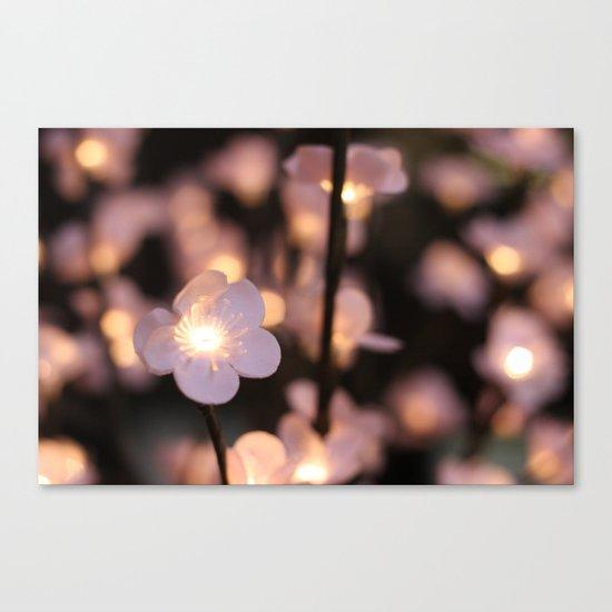 Pink lights Canvas Print