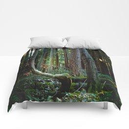 Detour Comforters