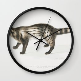 Bengal civet (Viverra Bengalensis) from Illustrations of Indian Zoology (1830-1834) by John Edward G Wall Clock