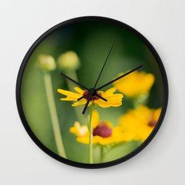 Portrait of a Wildflower in Summer Bloom Wall Clock