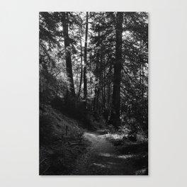 Big Sur Hike Canvas Print