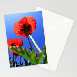 mohn 3 Stationery Cards