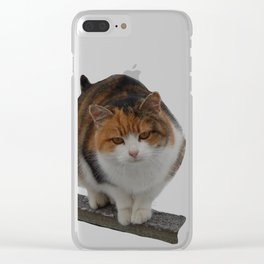 The cat crawls on the fence Clear iPhone Case