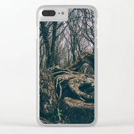 Craggy Knob Clear iPhone Case