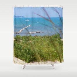 Lake shot through grass,Port Franks. Shower Curtain