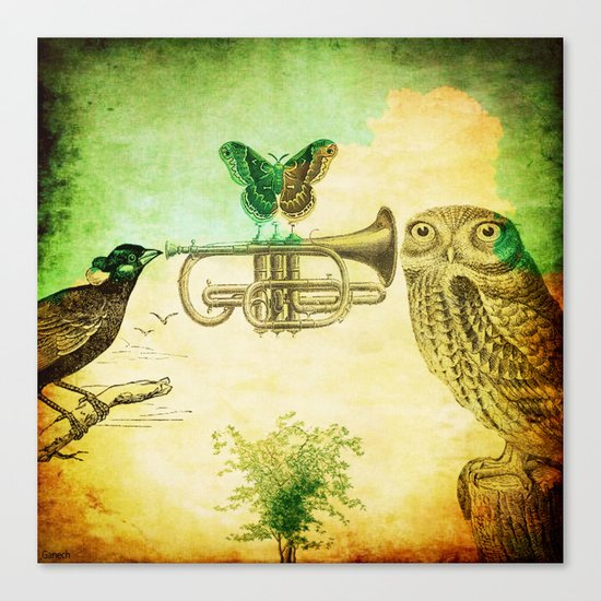 Music of birds Canvas Print