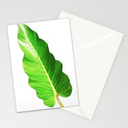 Philodendron Stationery Cards