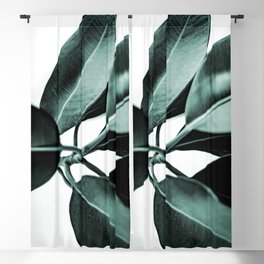Minimal Rubber Plant Blackout Curtain