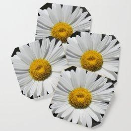 Contemporary White Daisy on Grey Pop Of Yellow Art A490 Coaster