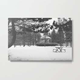 Winter in the park II Metal Print
