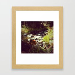 Healing Waters Framed Art Print