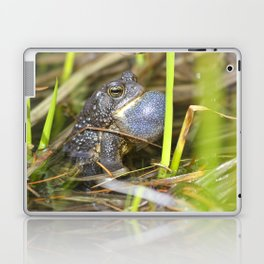 Toad with bulging throat Laptop & iPad Skin