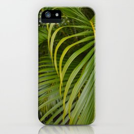 Summer Palm Leaves iPhone Case