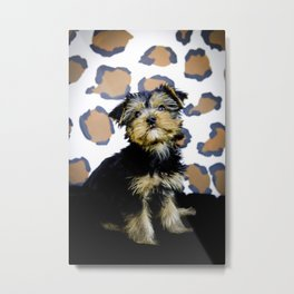 Yorkshire Terrier Puppy Looking up Sitting in front of Brown Leopard Print Background Metal Print