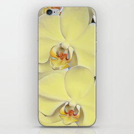 """A series of """"Favorite pillows """"""""Yellow Orchid"""" iPhone Skin"""
