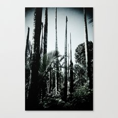 Decapitated Canvas Print