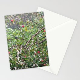 Apple Tree In The Forest Stationery Cards