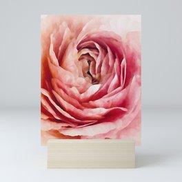 A Single Rose Mini Art Print