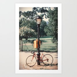 Phalicle ∆ Art Print