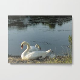 Parents and baby relaxing on the shore Metal Print