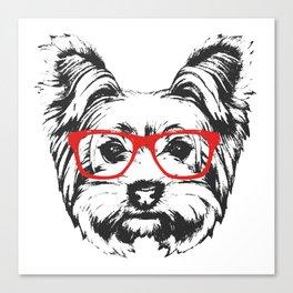 Portrait of Yorkshire Terrier Dog. Canvas Print