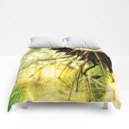 Dandelion 7 Comforters