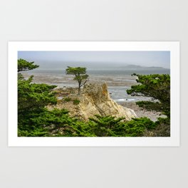 Lone Cypress, Pebble Beach, California Art Print