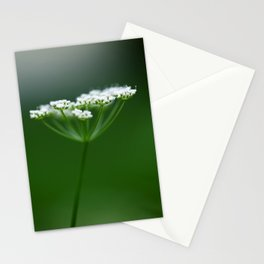 Queen's Drama Stationery Cards