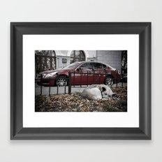 dream city dog Framed Art Print