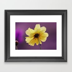 Yellow solitaire 52 Framed Art Print