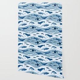 Whale Songs Wallpaper