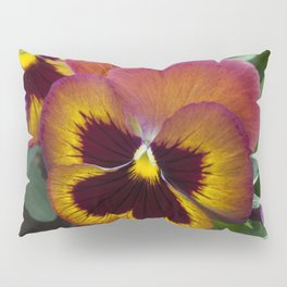 Pansy Painted Pillow Sham
