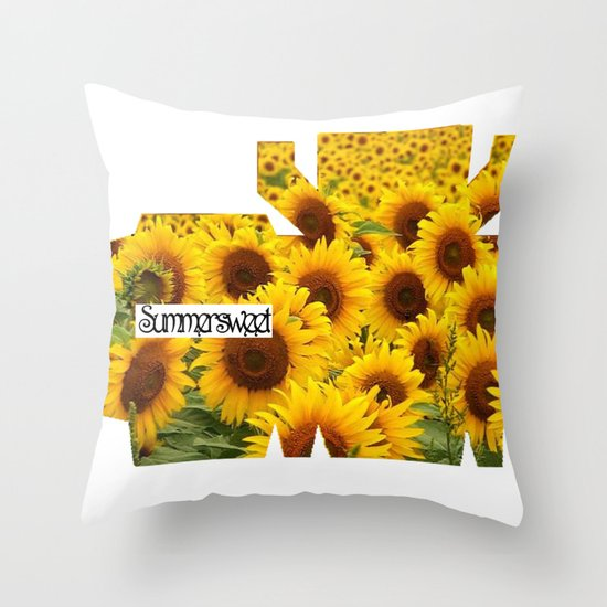 Make your own CANDYBOX Throw Pillow
