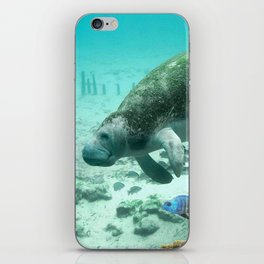Large  Manatee iPhone Skin