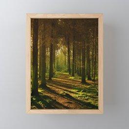 Caminho na natureza Framed Mini Art Print