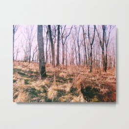 FOREST BED Metal Print
