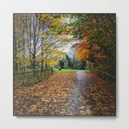 A Stroll Along the Path to Autumn Metal Print