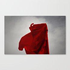 Wind Dancer Canvas Print