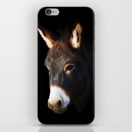 Donkey Black Background iPhone Skin